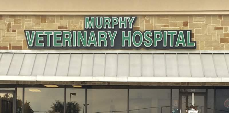 Murphy Veterinary Hospital