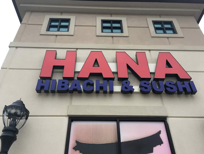 Hana Habachi and Sushi
